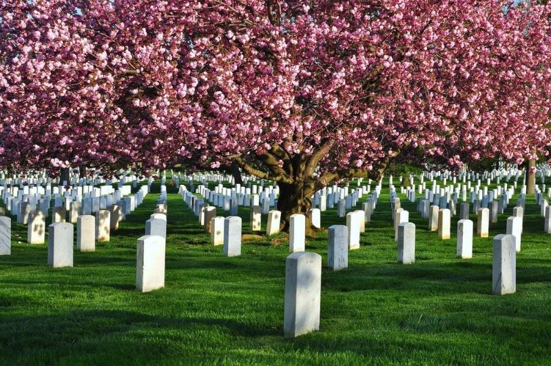 Chiêm bao thấy nghĩa địa mang điềm báo tốt lành đến với bạn.